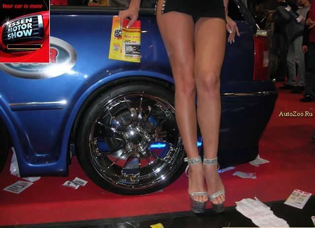 Best girls from automotive shows