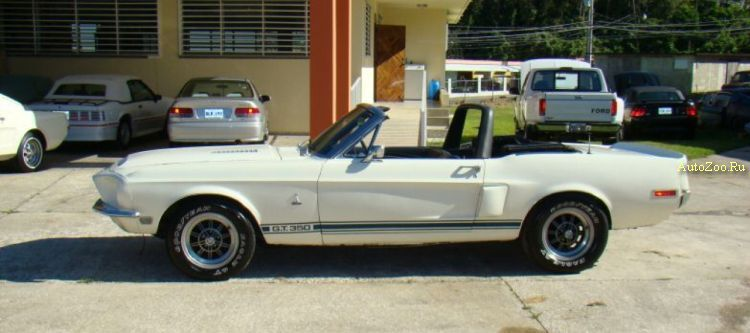Mustangs on eBay