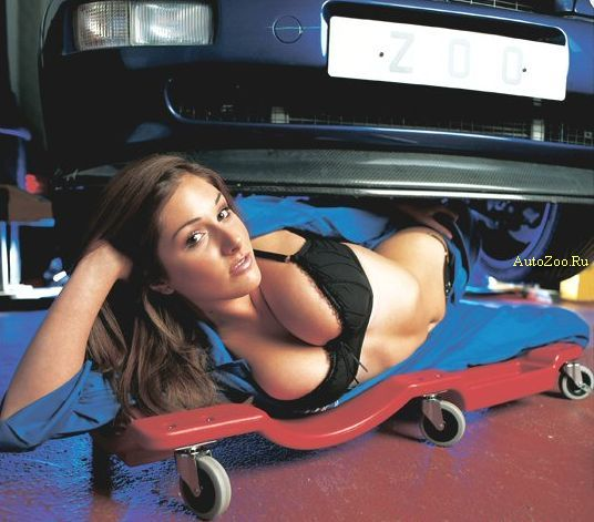 sexy boobs and cars