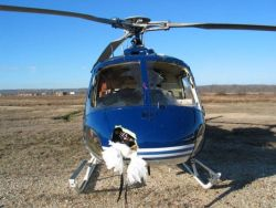 helicopter-crash_28_01_small.jpg